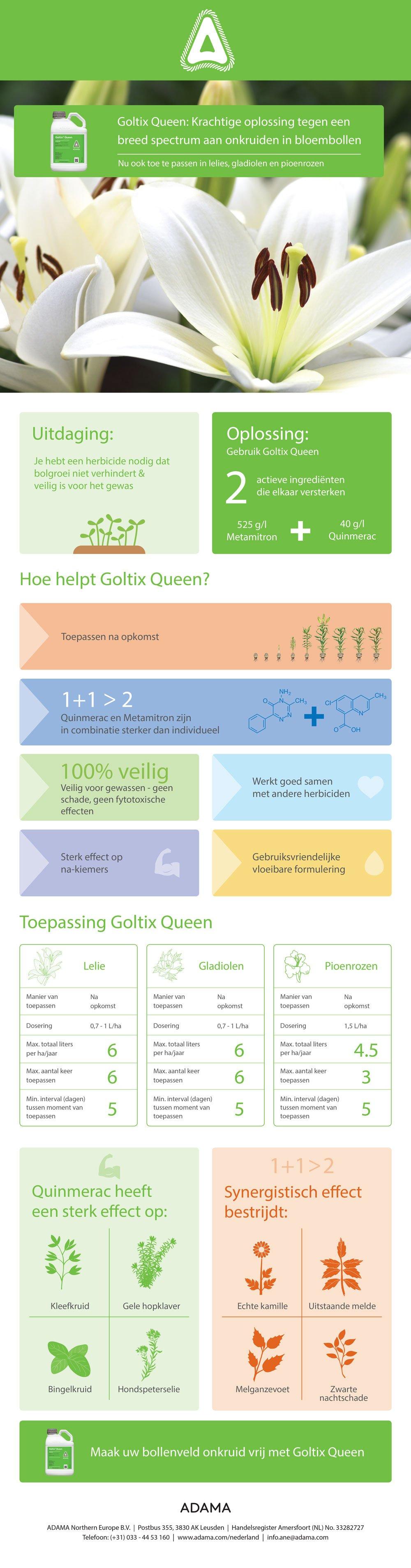 Goltix-infographic-bloembollen