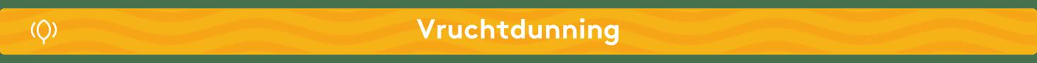 Mini banner - portfolio (4)