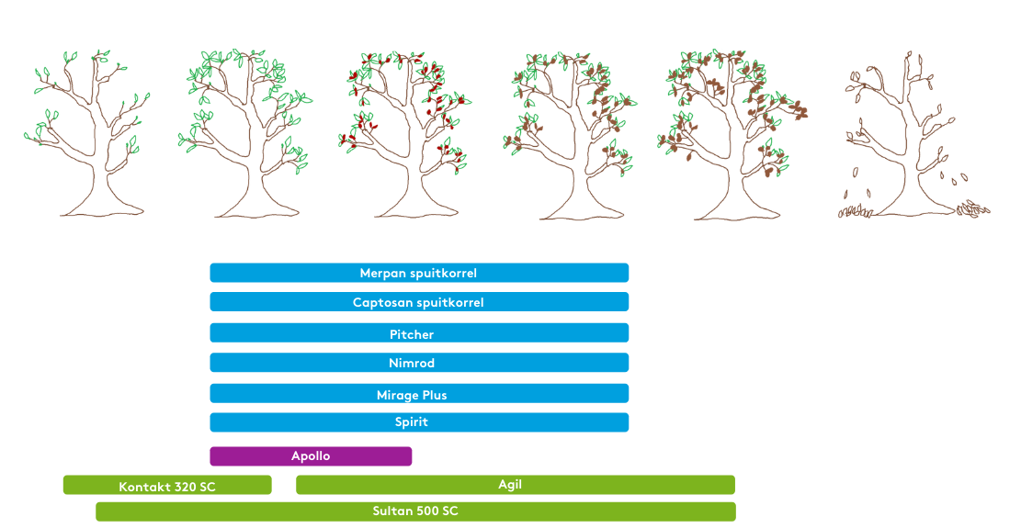 Portfolio - application moment - Tree Nursery (3)